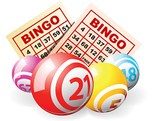 nybörjar guide bingo